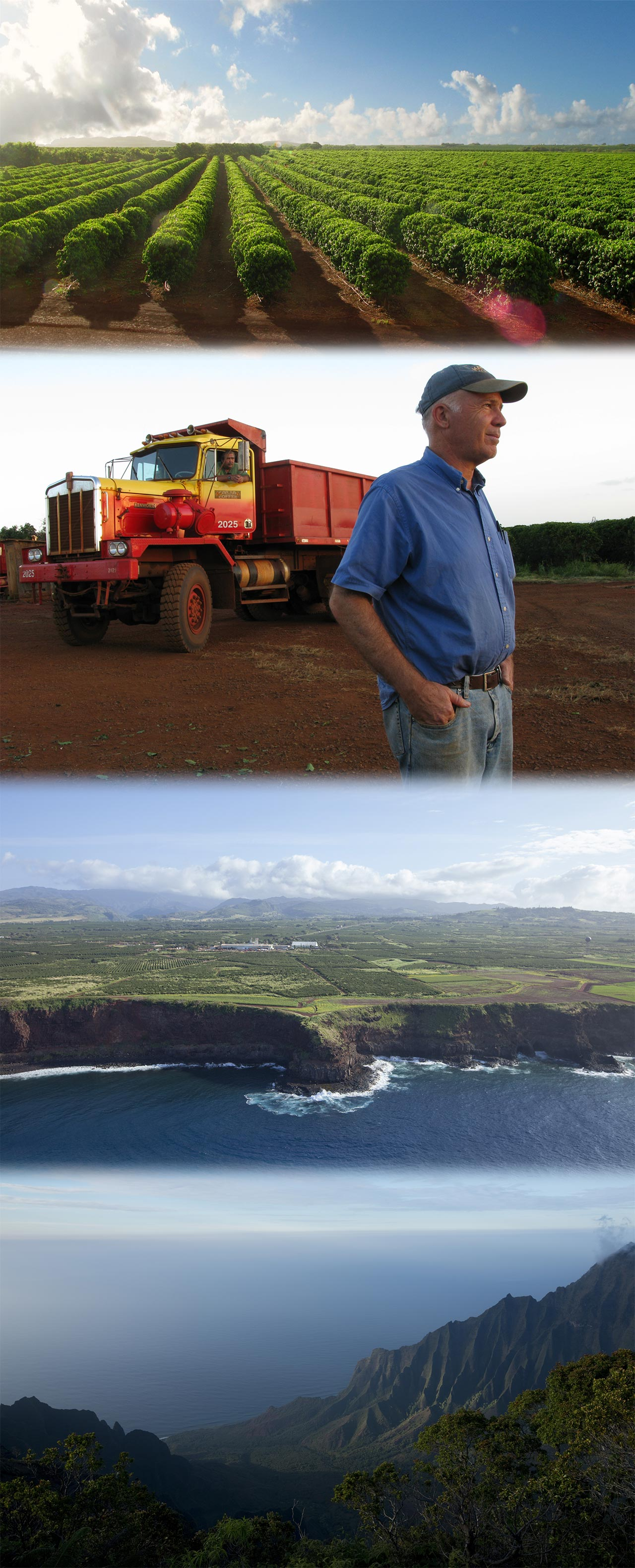 Luoghi - Kauai All-In-One